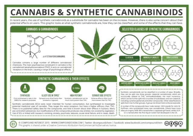 Cannabis-Synthetic-Cannabinoids-650x459