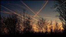 5. chem skies45