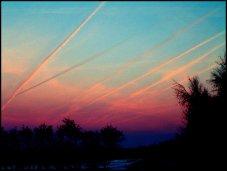 8. chem skies50