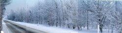 sne skud19