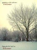 sne skud23
