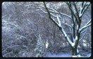sne skud24