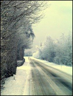 sne skud3