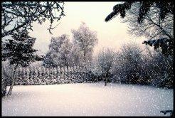 sne skud6