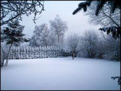 sne skud7